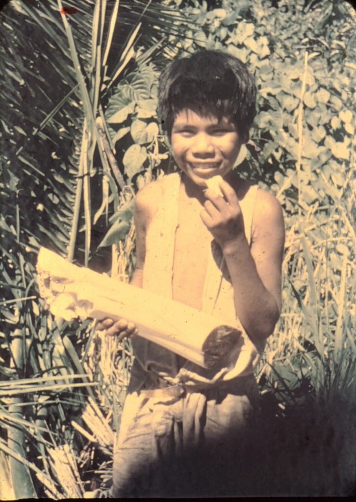 Ayoré child with a palm heart, good to eat raw or cooked.