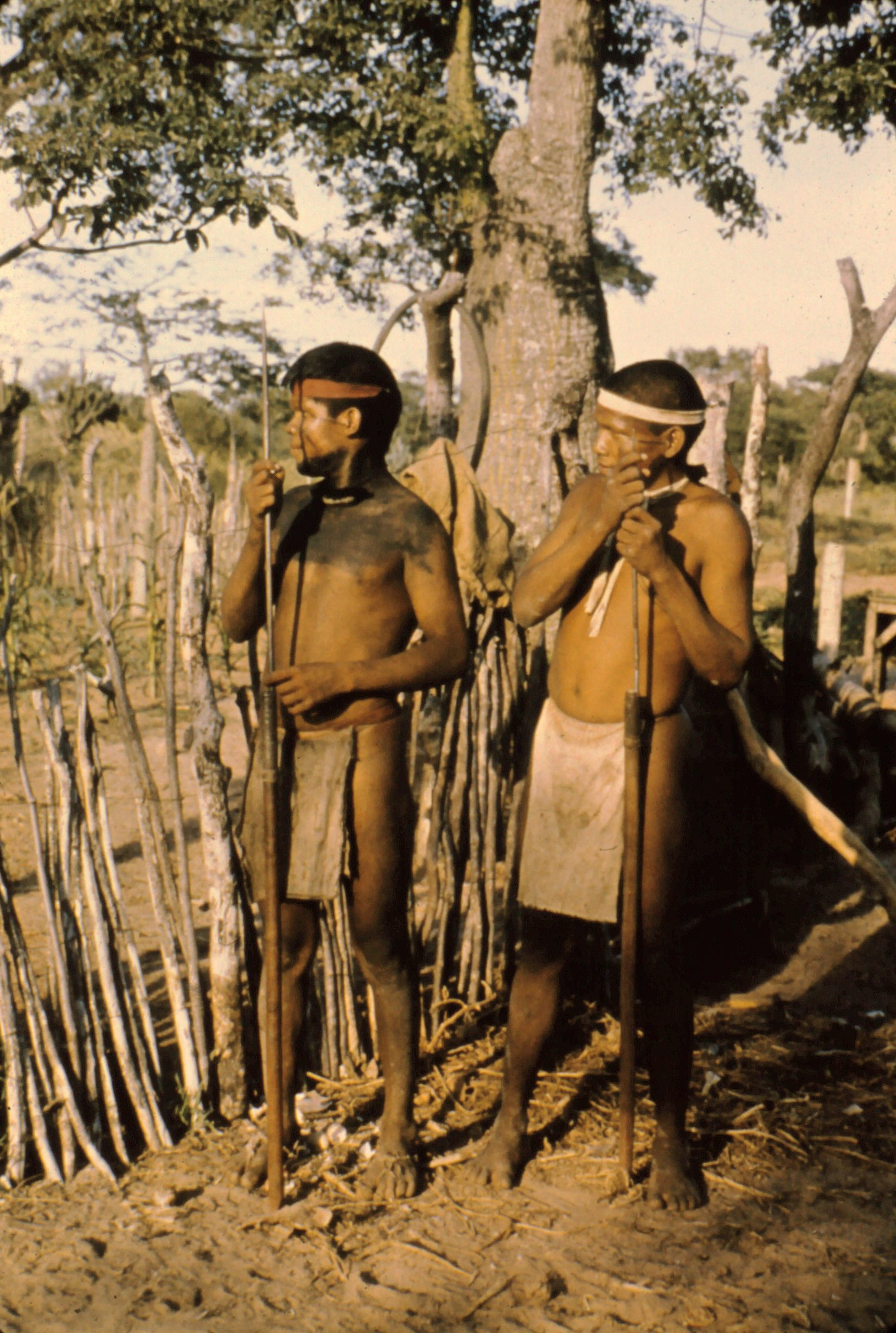 Ayoré men - headbands, body painting, loincothes, hair necklaces, tapir skin sandals, spears.