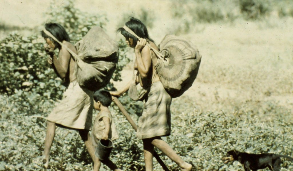 Ayoré women carry round bags full of whatever they have gathered and head back home.